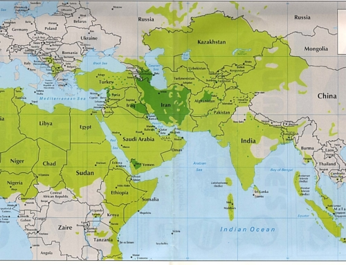 "The Notion of the ""Muslim World"""